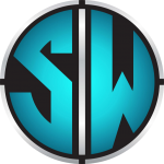 servicii website logo pro